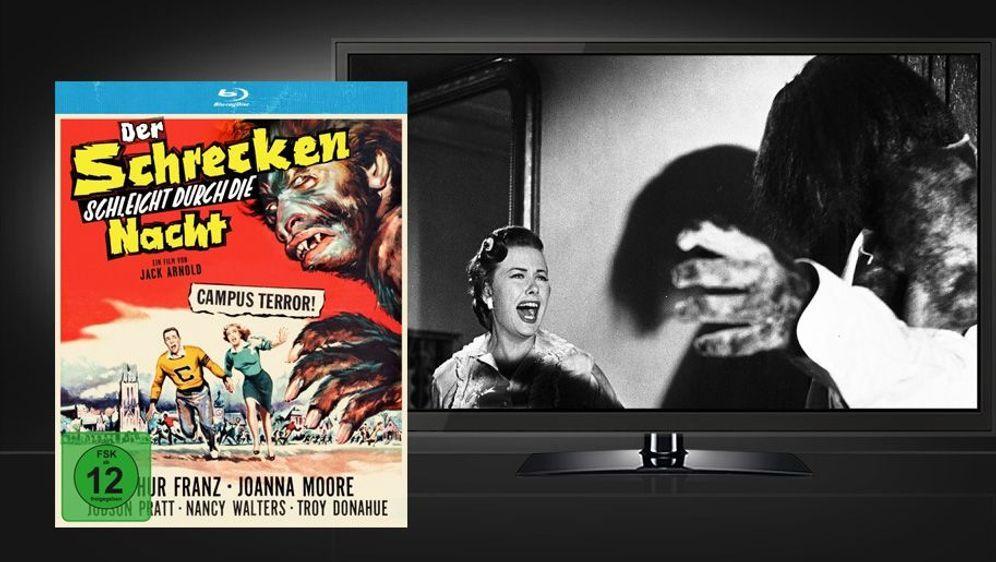 Der Schrecken schleicht durch die Nacht (Blu-ray) - Bildquelle: Foo