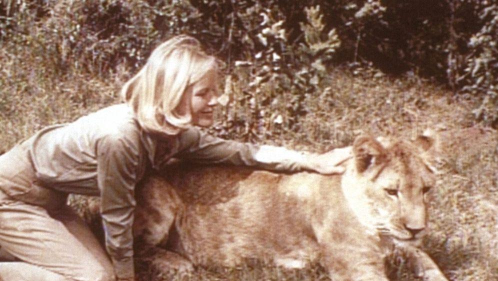 Frei geboren - Königin der Wildnis - Bildquelle: Foo