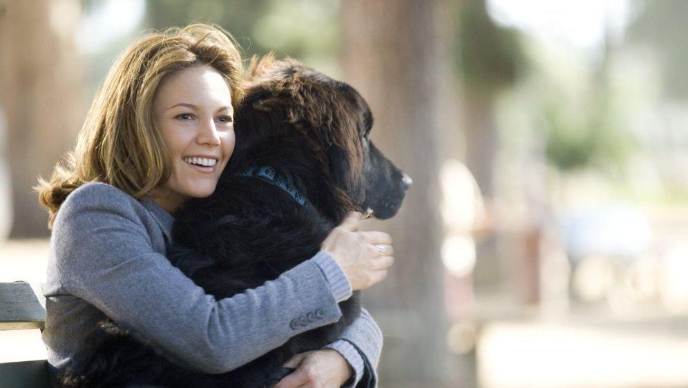 Frau mit Hund sucht Mann mit Herz - Bildquelle: Foo
