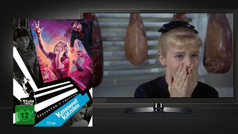Kennwort Kätzchen (Mediabook Blu-ray+DVD) - Bildquelle: Foo