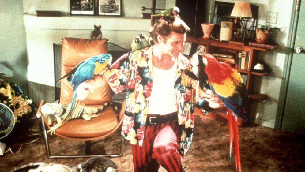Ace Ventura - Ein tierischer Detektiv - Bildquelle: Foo