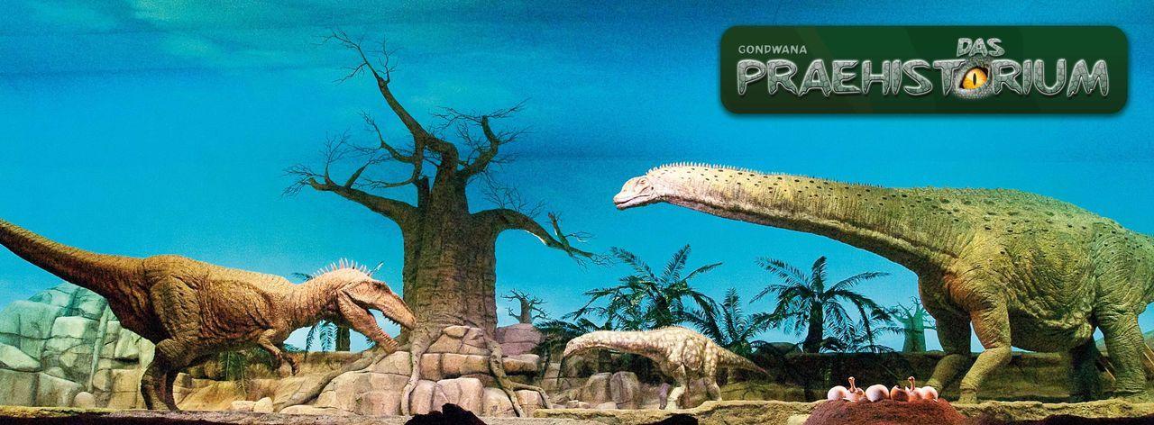 Gondwana - das Praehistorium in Schiffsweiler-b2264dc6f4838f62abb14115 - Bildquelle: DIE BILDRECHTE LIEGEN BEI GONDWANA PRAEHISTORIUM E.K., HERRN MATTHIAS MICHAEL KUHL