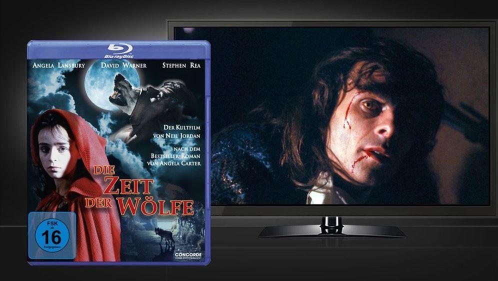 Zeit der Wölfe (Blu-ray Disc) - Bildquelle: Foo