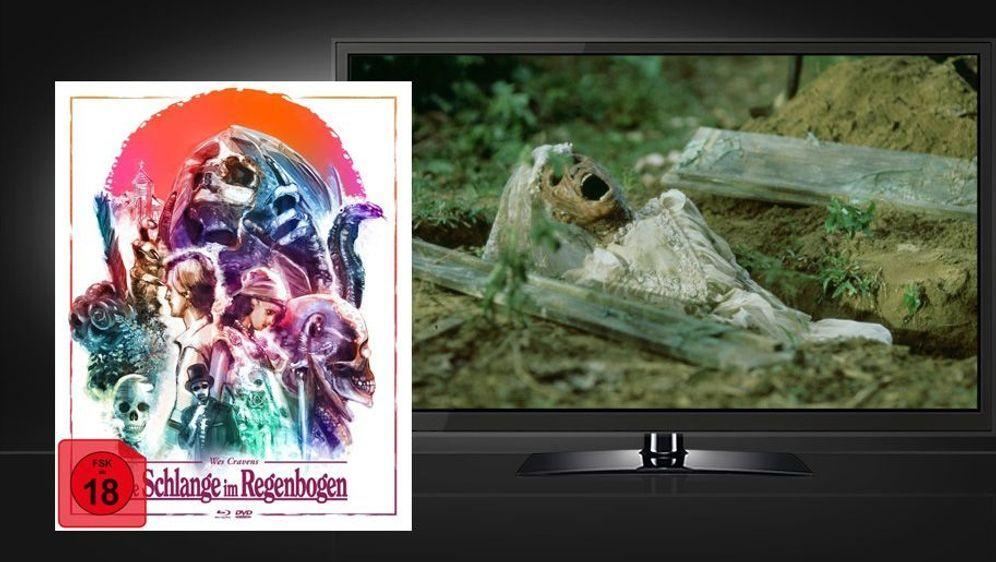 Die Schlange im Regenbogen (Blu-ray+DVD Mediabook) - Bildquelle: Foo