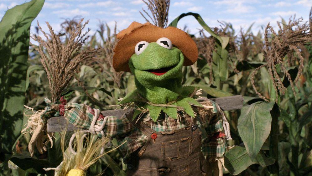 Muppets: Der Zauberer von Oz - Bildquelle: Foo