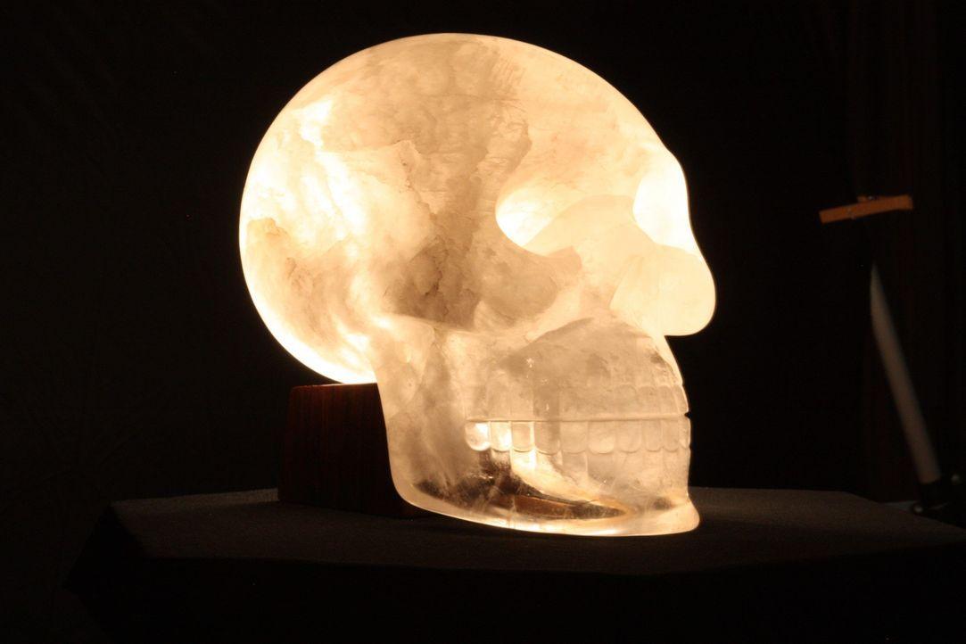 Die Kristallschädel - Bildquelle: A&E Television Networks