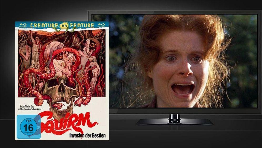 Squirm - Invasion der Bestien (Blu-ray) - Bildquelle: Foo