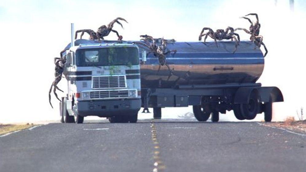 Arac Attack - Angriff der achtbeinigen Monster - Bildquelle: Foo