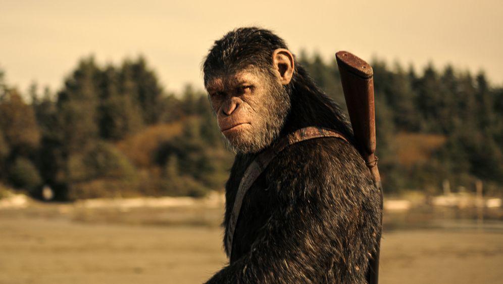 Planet der Affen: Survival - Bildquelle: Foo