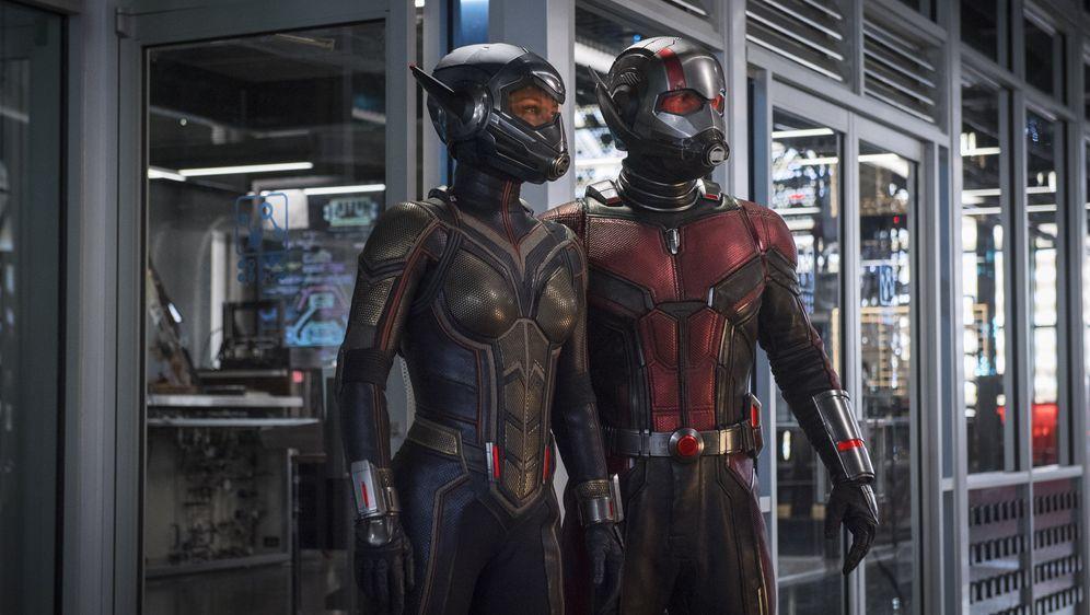 Ant-Man and the Wasp - Bildquelle: Foo