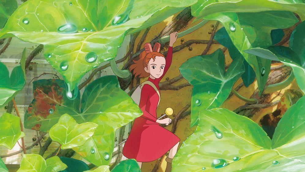 Arrietty - Die wundersame Welt der Borger - Bildquelle: Foo