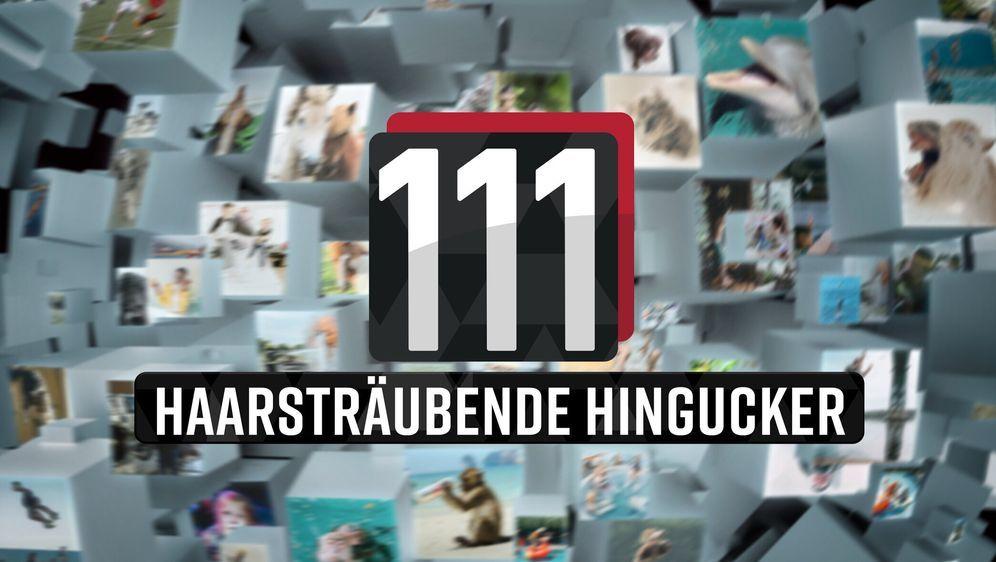 111 haarsträubende Hingucker! - Bildquelle: Foo