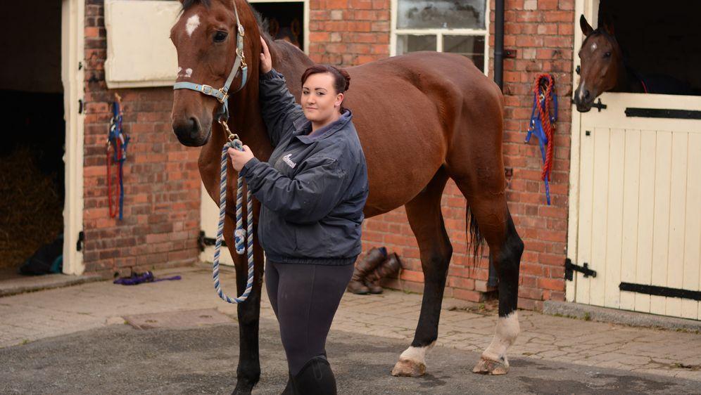 Der Tierarzt von Yorkshire - Bildquelle: Foo